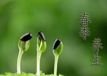 春季养生排毒法有哪些
